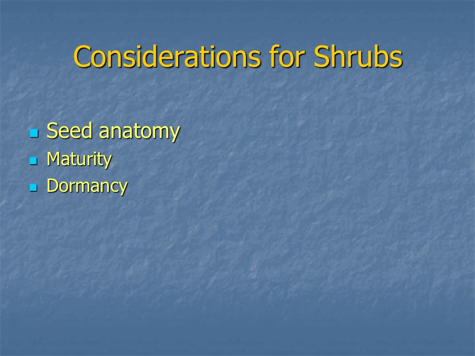 Considerations for Shrubs