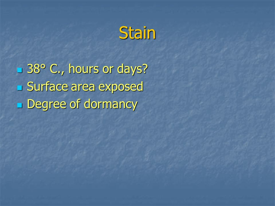 Stain 38° C., hours or days Surface area exposed Degree of dormancy