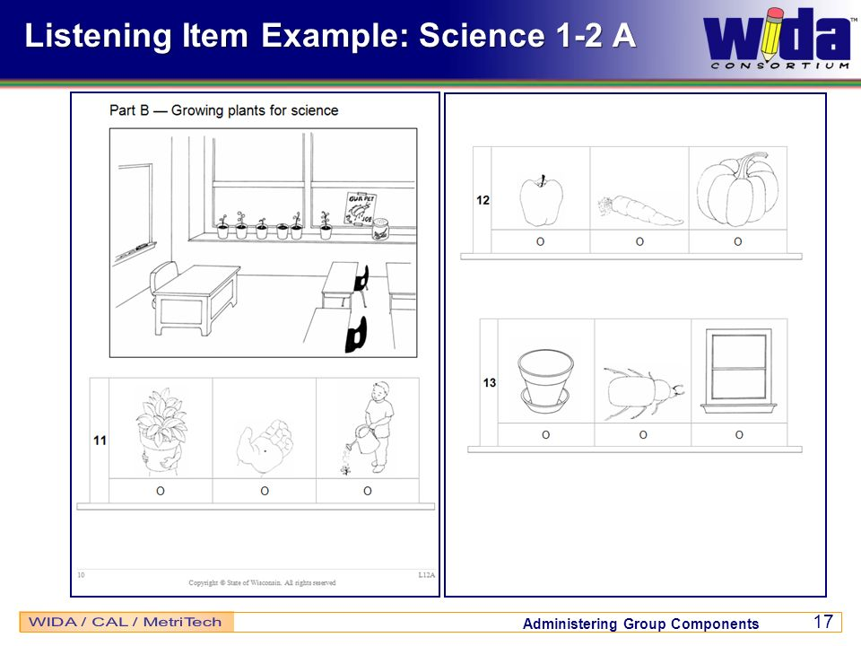 Listening Item Example: Science 1-2 A