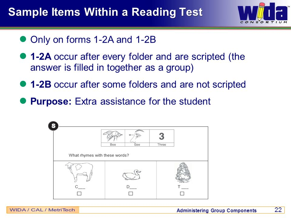 Sample Items Within a Reading Test