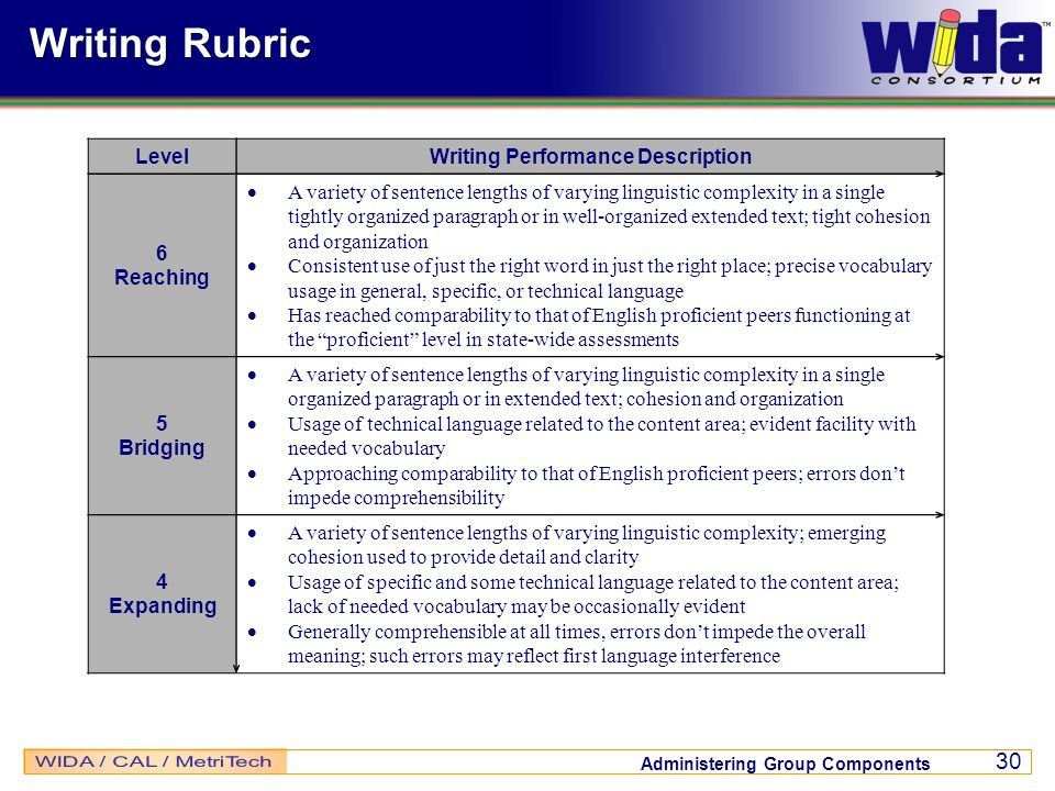 Writing Performance Description