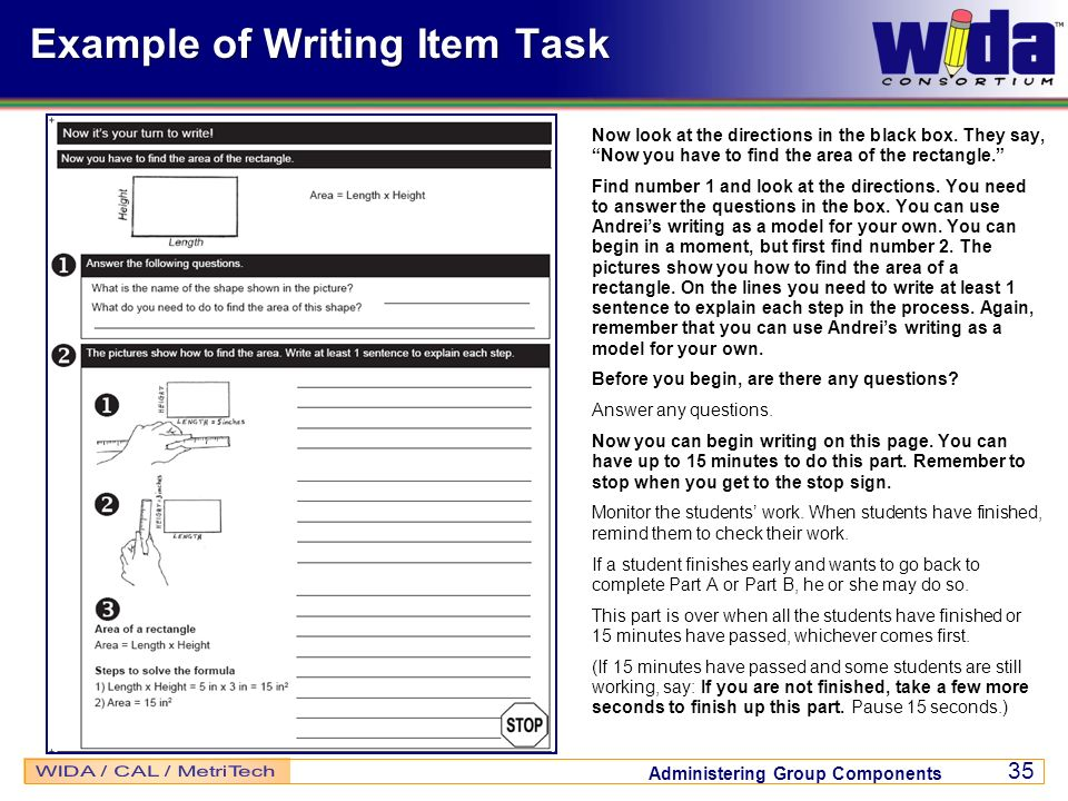 Example of Writing Item Task