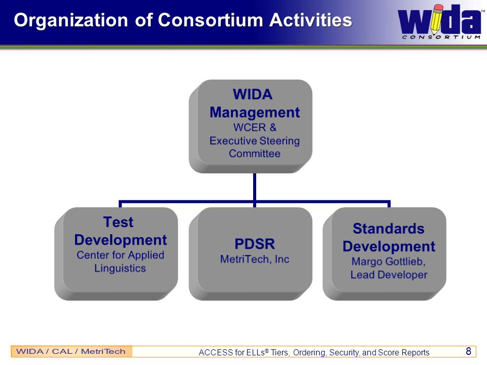 Organization of Consortium Activities