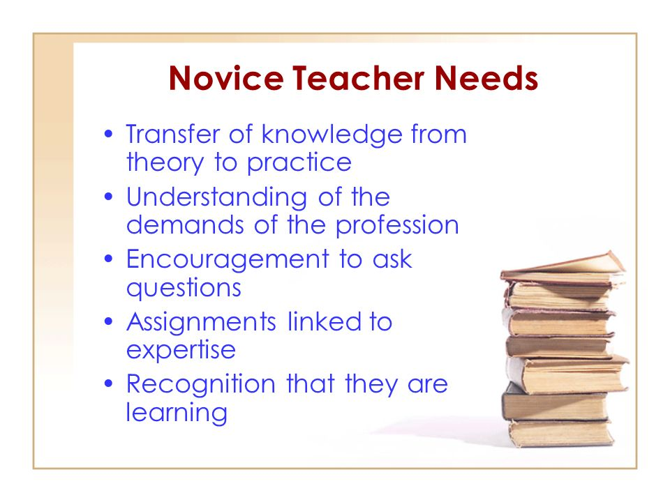 Novice Teacher Needs Transfer of knowledge from theory to practice