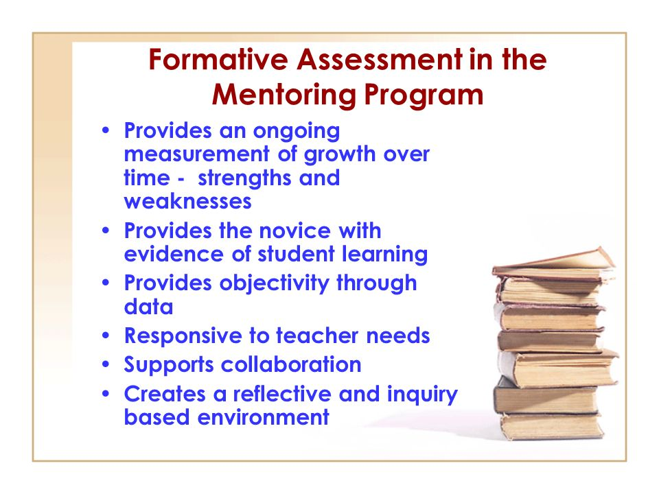Formative Assessment in the Mentoring Program