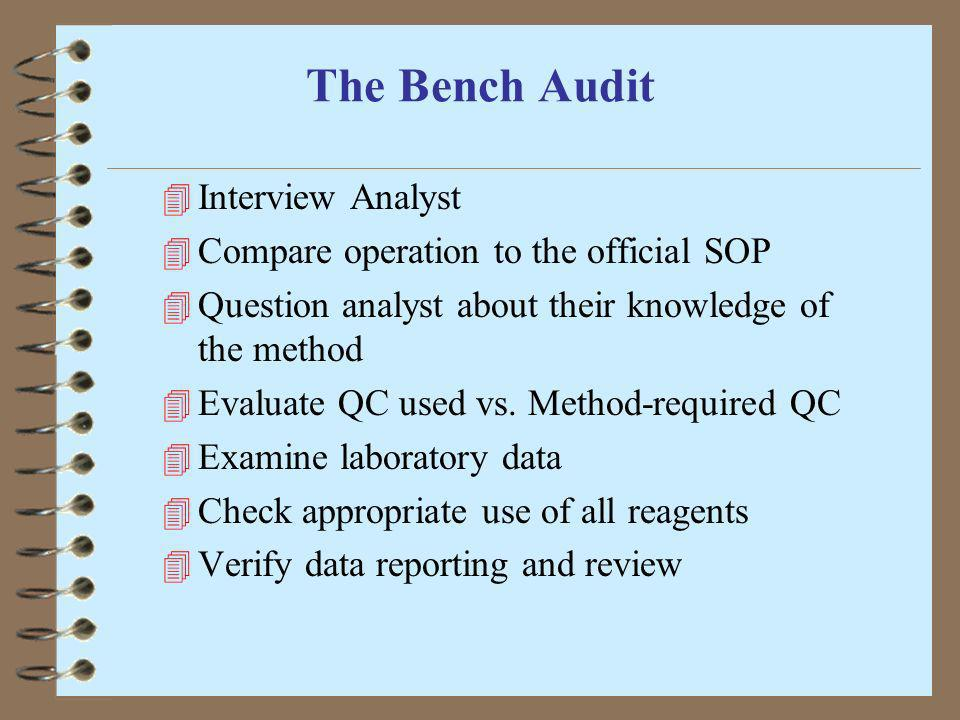 The Bench Audit Interview Analyst