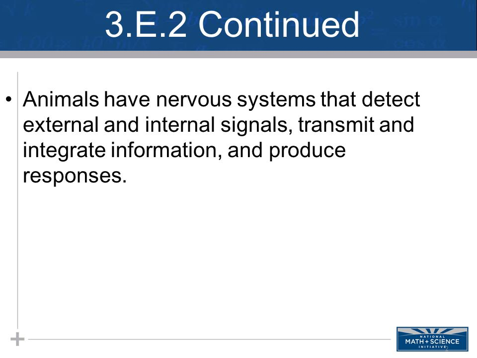 3.E.2 Continued Animals have nervous systems that detect external and internal signals, transmit and integrate information, and produce responses.