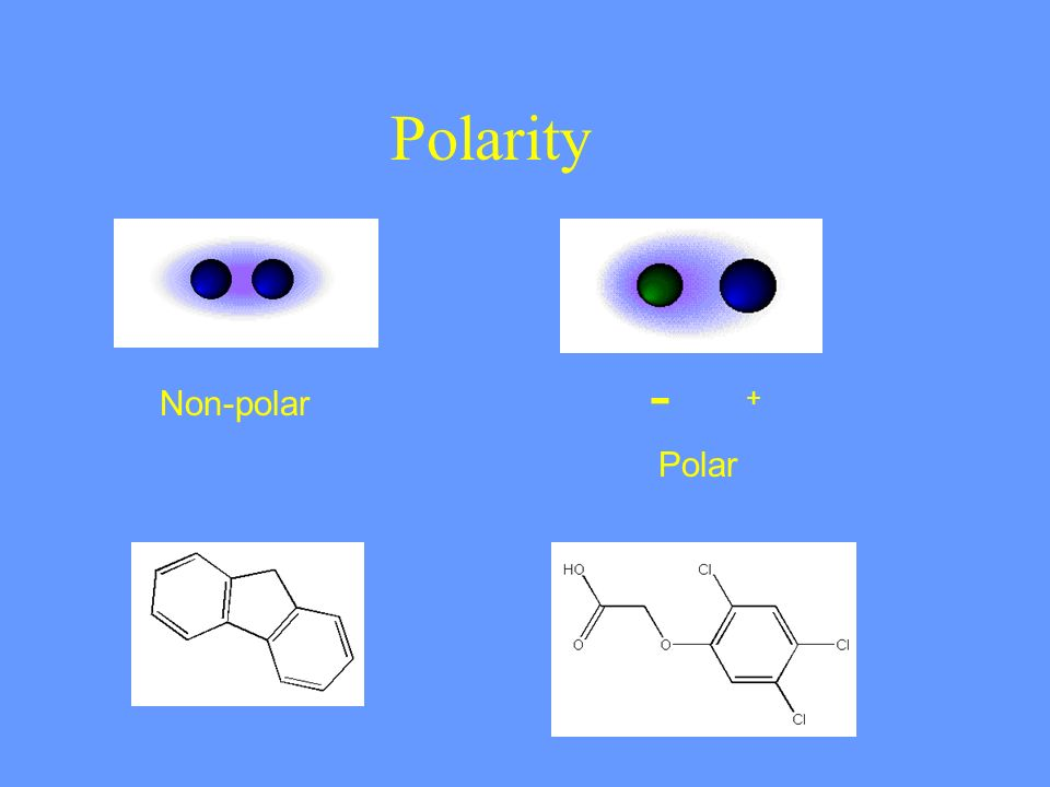 Polarity - Non-polar Polar +
