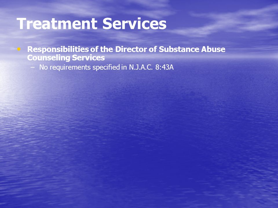 Treatment Services Responsibilities of the Director of Substance Abuse Counseling Services.