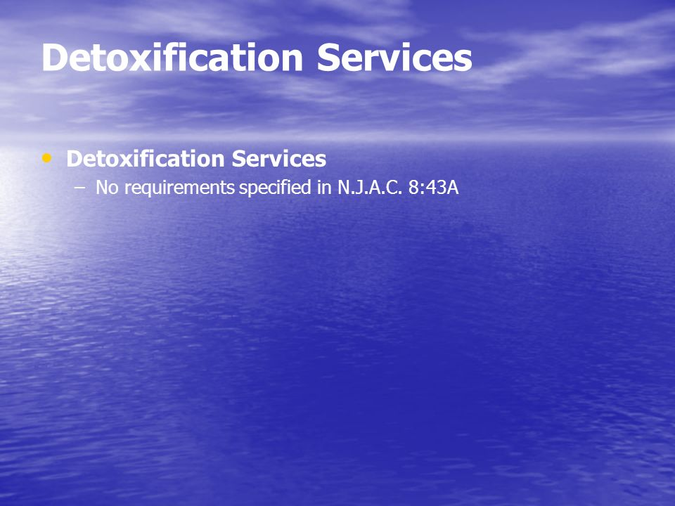 Detoxification Services