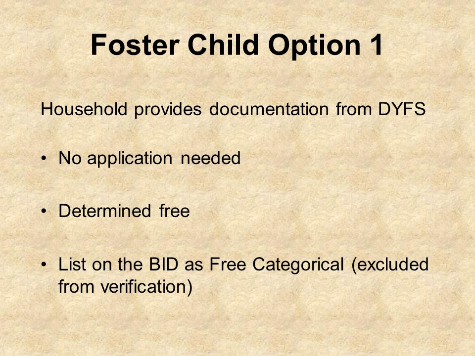 Foster Child Option 1 Household provides documentation from DYFS