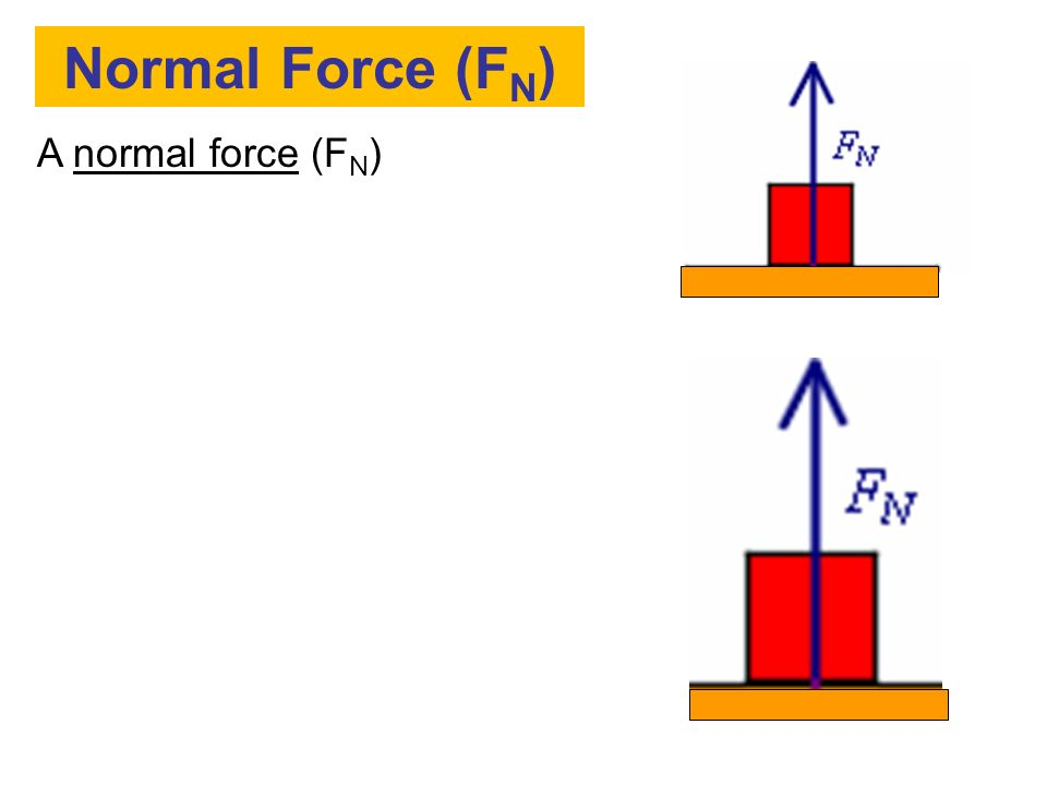 Normal Force (FN) A normal force (FN)