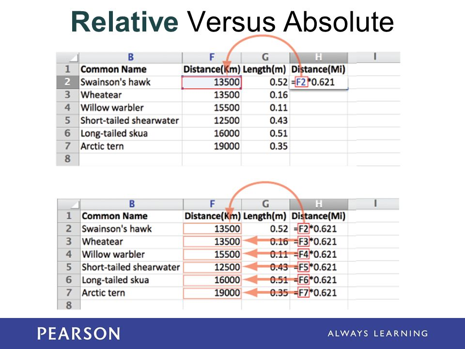 relative excersies Use ginger's adjective exercises to practice adding the right adjectives to your sentences give these free adjective exercises a try.