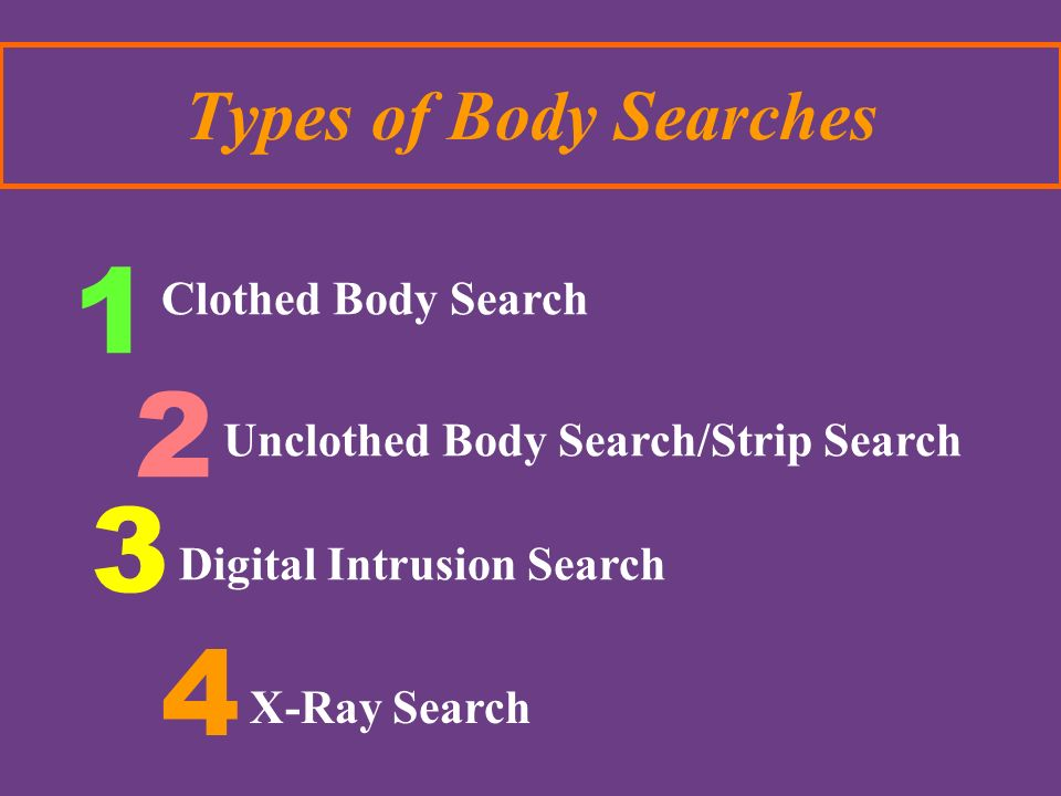 1 2 3 4 Types of Body Searches Clothed Body Search