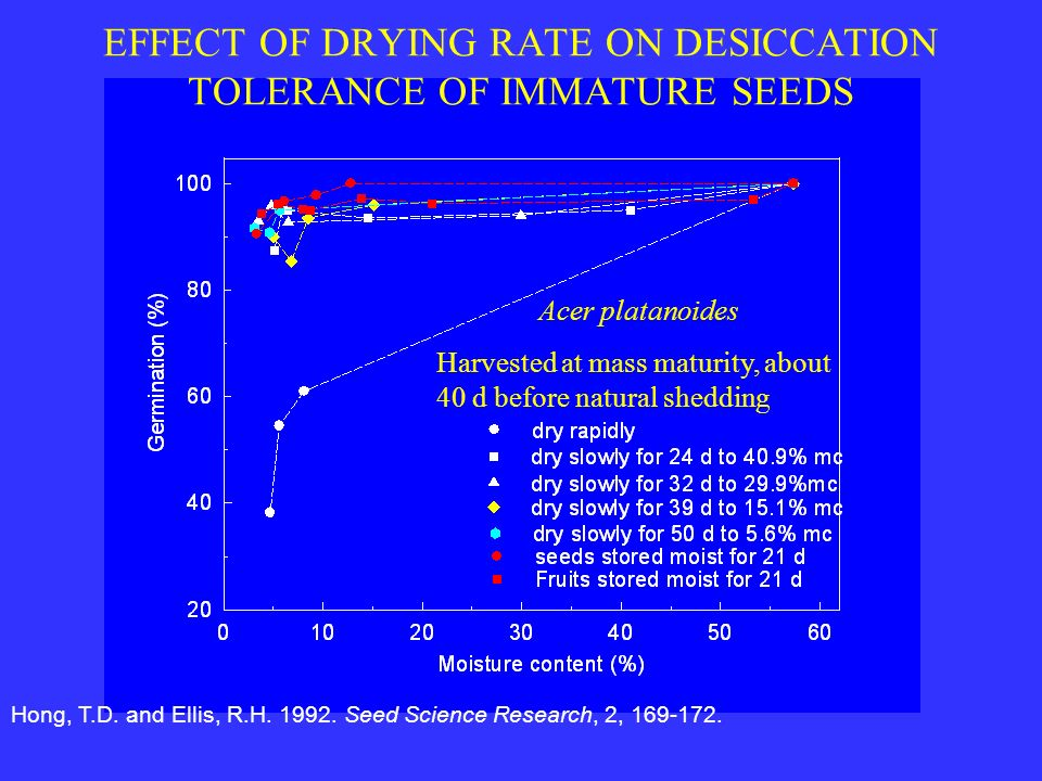 EFFECT OF DRYING RATE ON DESICCATION TOLERANCE OF IMMATURE SEEDS