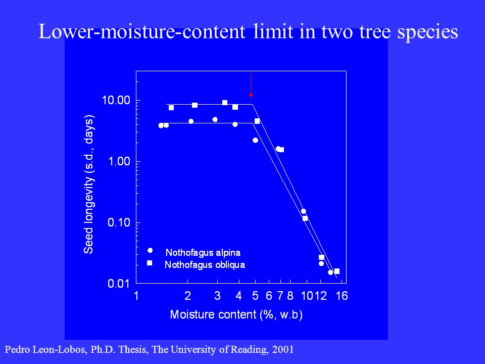 Lower-moisture-content limit in two tree species