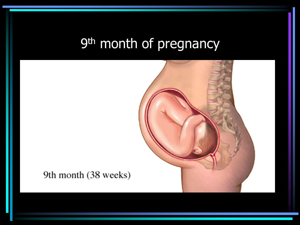 Pregnancy Health Education.