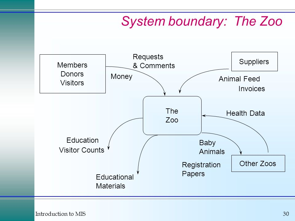 System boundary: The Zoo