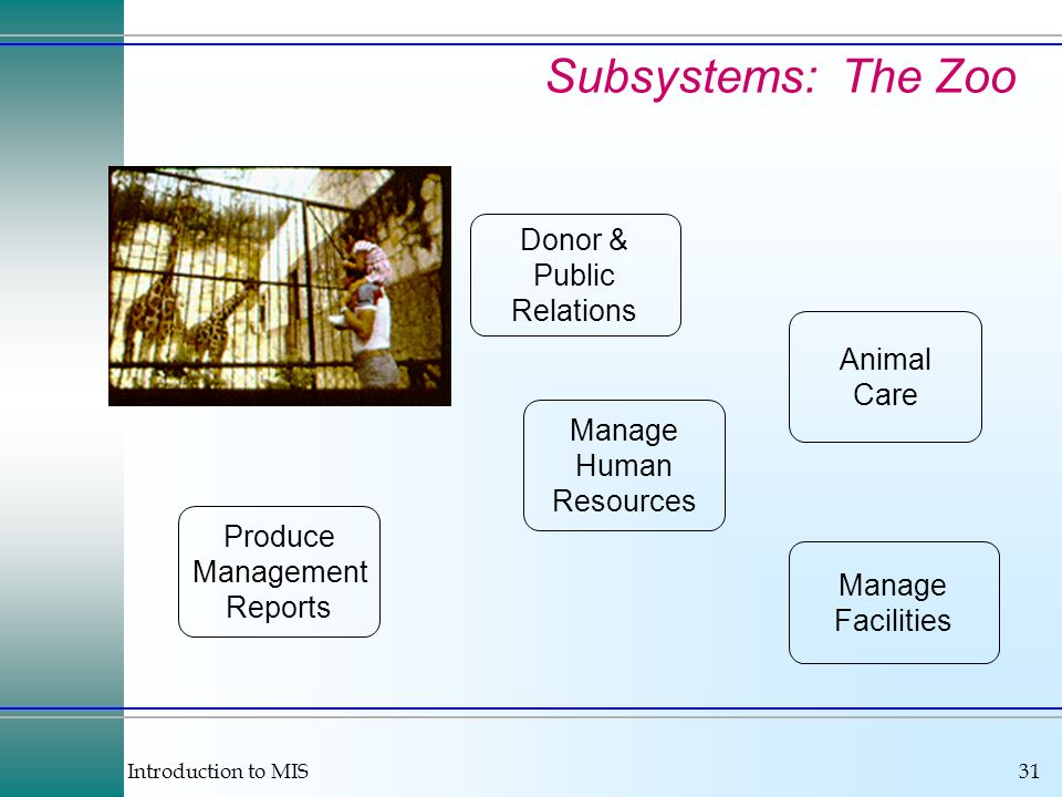 Subsystems: The Zoo Donor & Public Relations Animal Care Manage Human