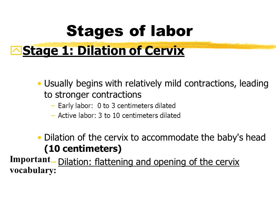 how to feel cervix for early pregnancy