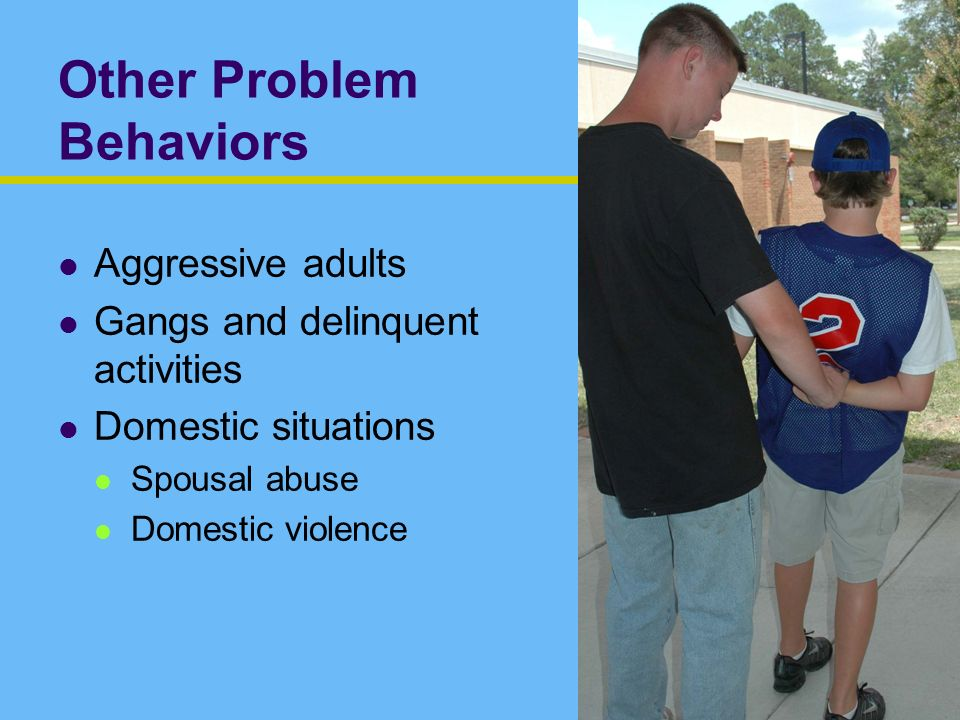 Other Problem Behaviors