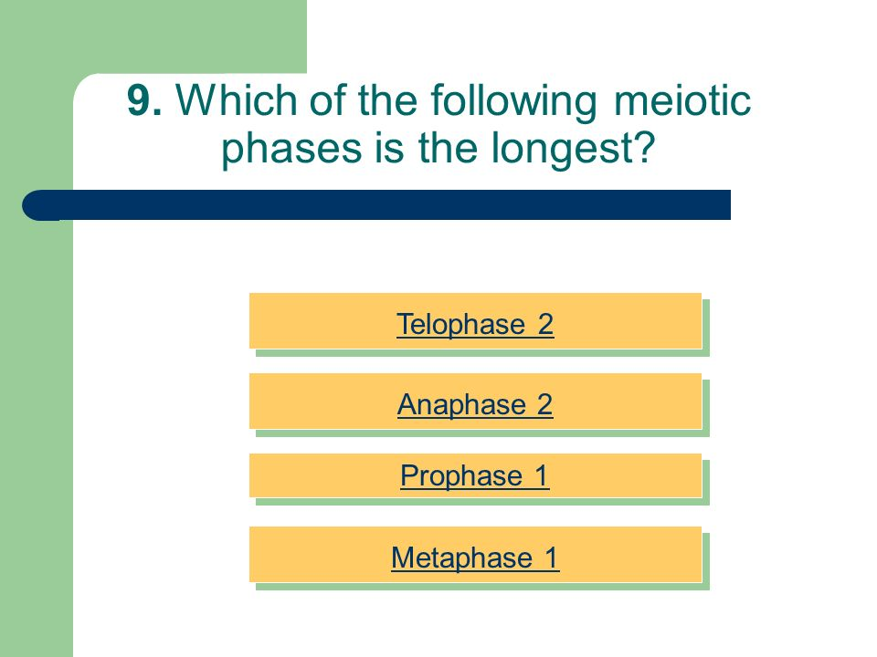 9. Which of the following meiotic phases is the longest