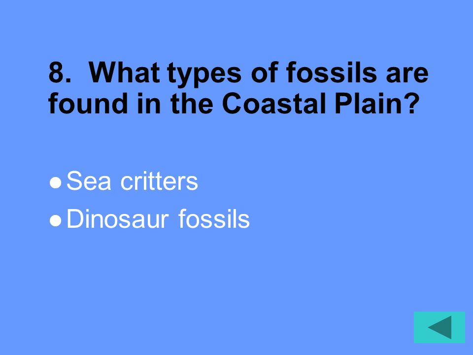 8. What types of fossils are found in the Coastal Plain