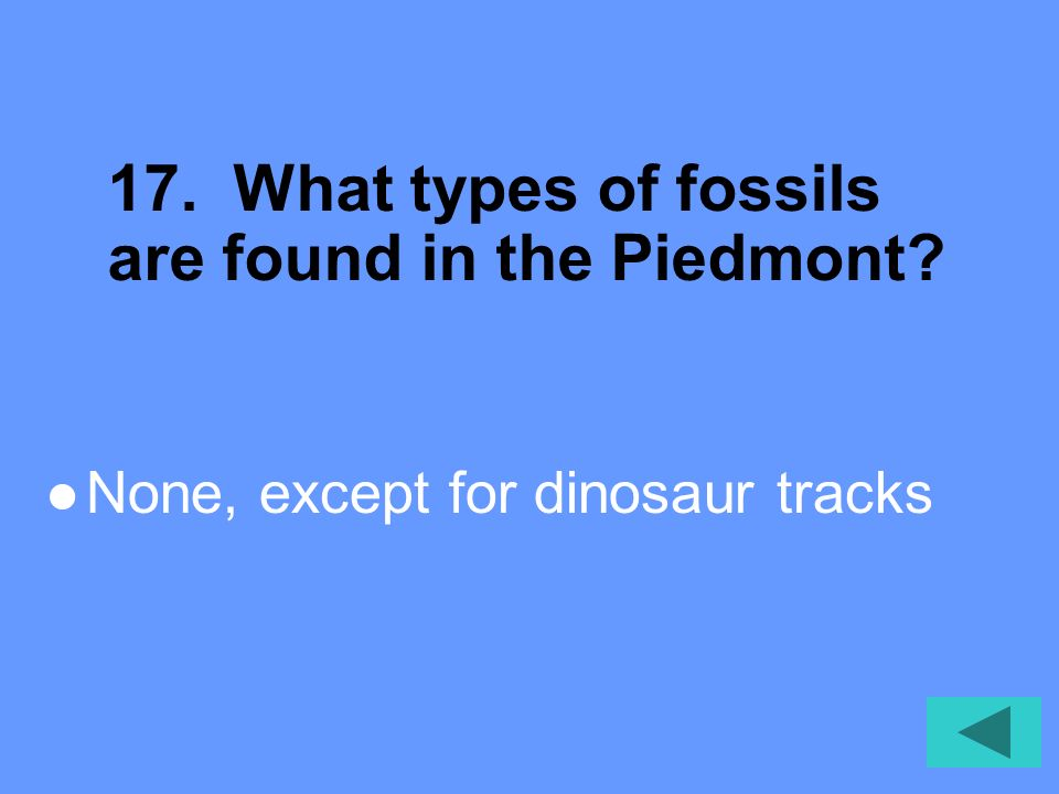 17. What types of fossils are found in the Piedmont