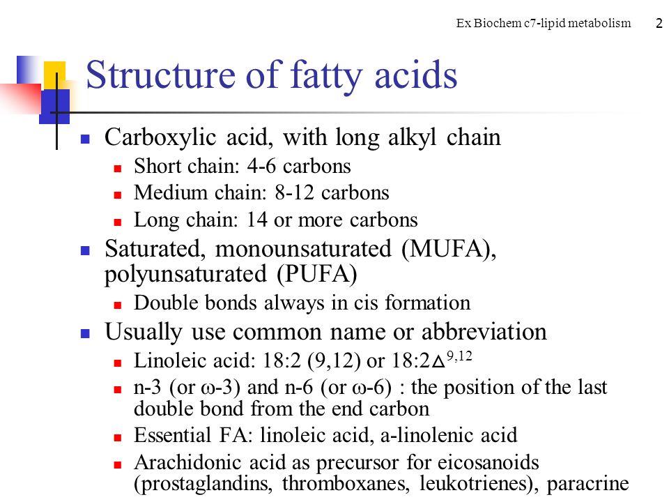 lipid metabolism ppt video online download