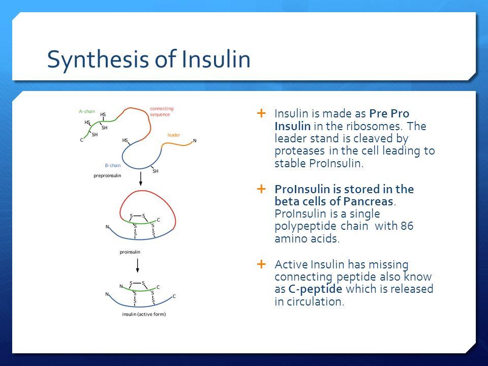 insulin synthesis Insulin-independent regulation of hepatic triglyceride synthesis by fatty acids daniel f vatnera,1, sachin k majumdara,1, naoki kumashiroa, max c petersenb,c, yasmeen rahimia, arijeet k gattud.