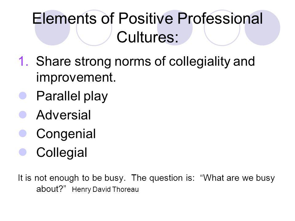 Elements of Positive Professional Cultures:
