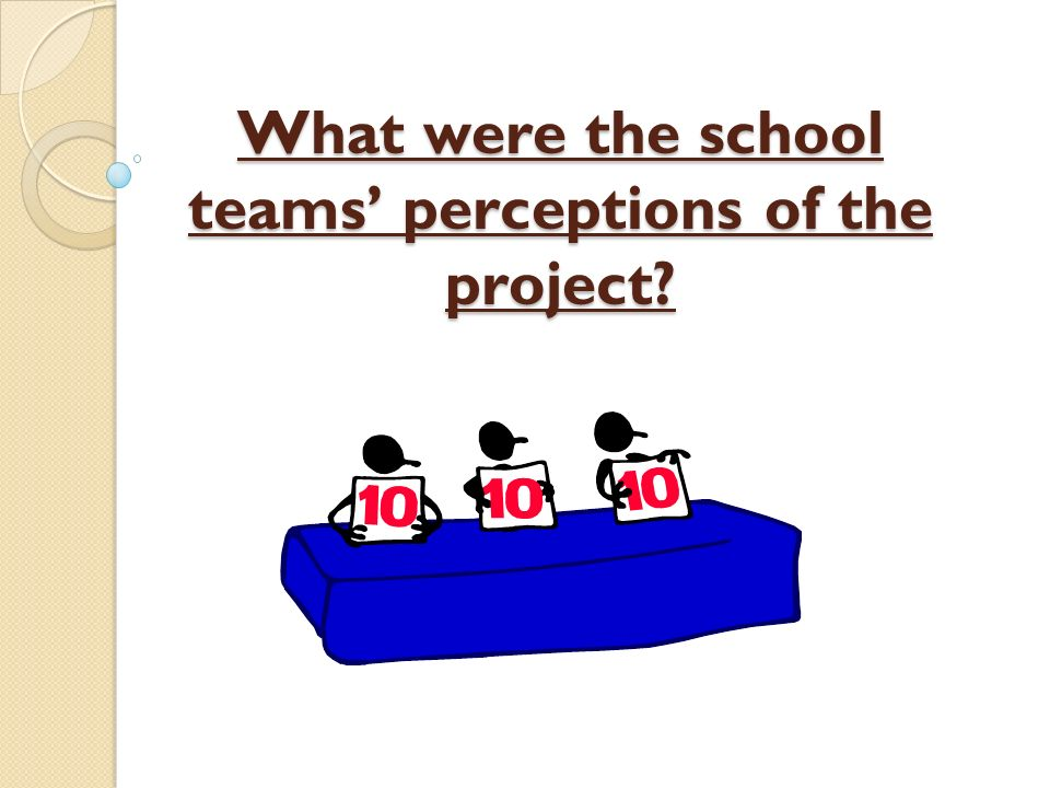 What were the school teams' perceptions of the project