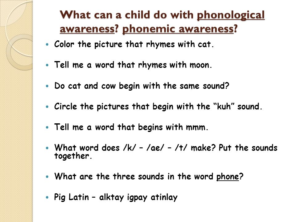 What can a child do with phonological awareness phonemic awareness