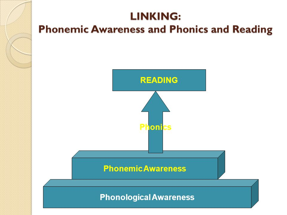 LINKING: Phonemic Awareness and Phonics and Reading