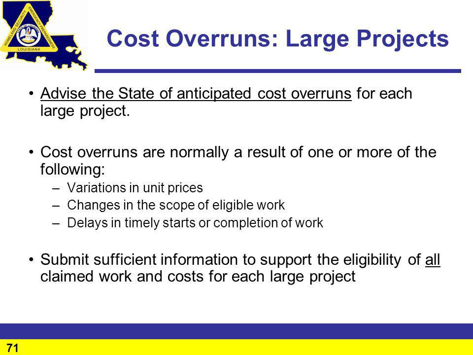 Cost Overruns: Large Projects
