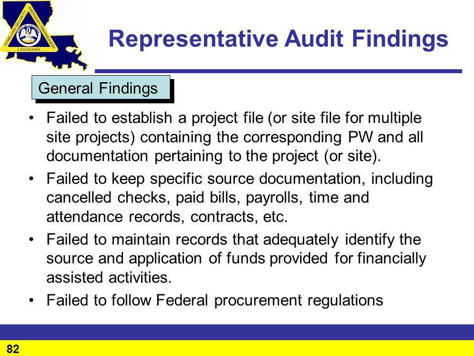 Representative Audit Findings