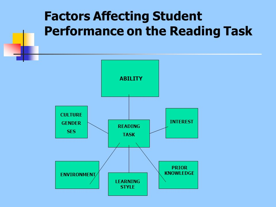 Factors Affecting Student Performance on the Reading Task