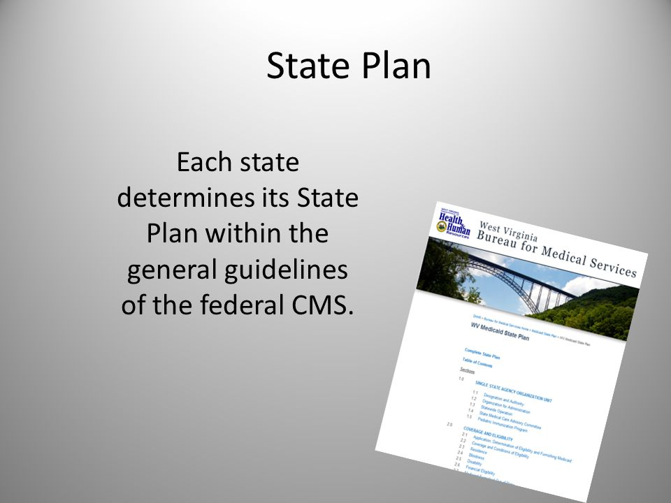 State Plan Each state determines its State Plan within the general guidelines of the federal CMS.