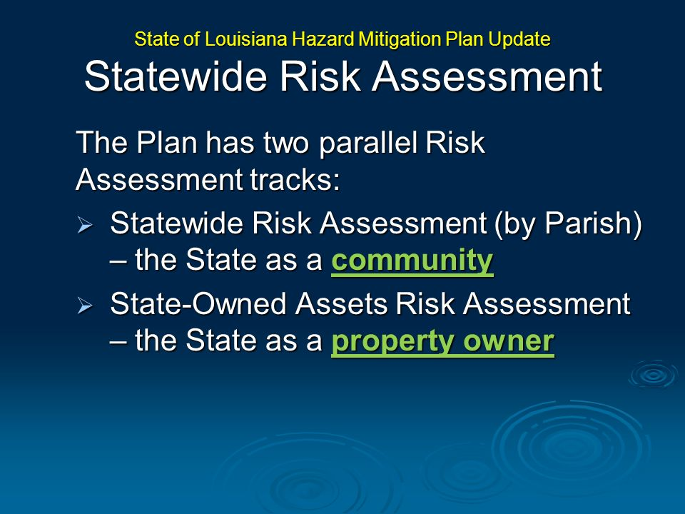 The Plan has two parallel Risk Assessment tracks: