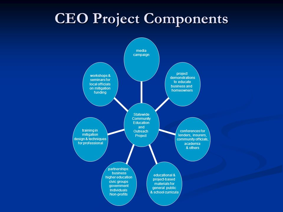 CEO Project Components