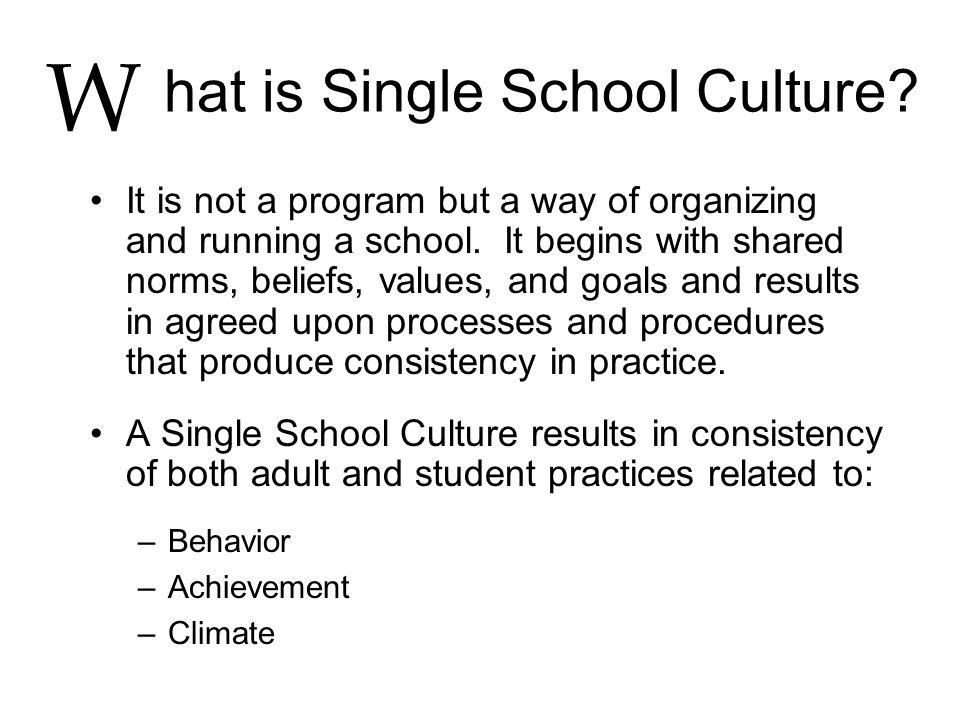 hat is Single School Culture