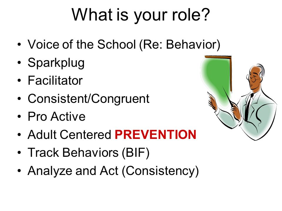 What is your role Voice of the School (Re: Behavior) Sparkplug