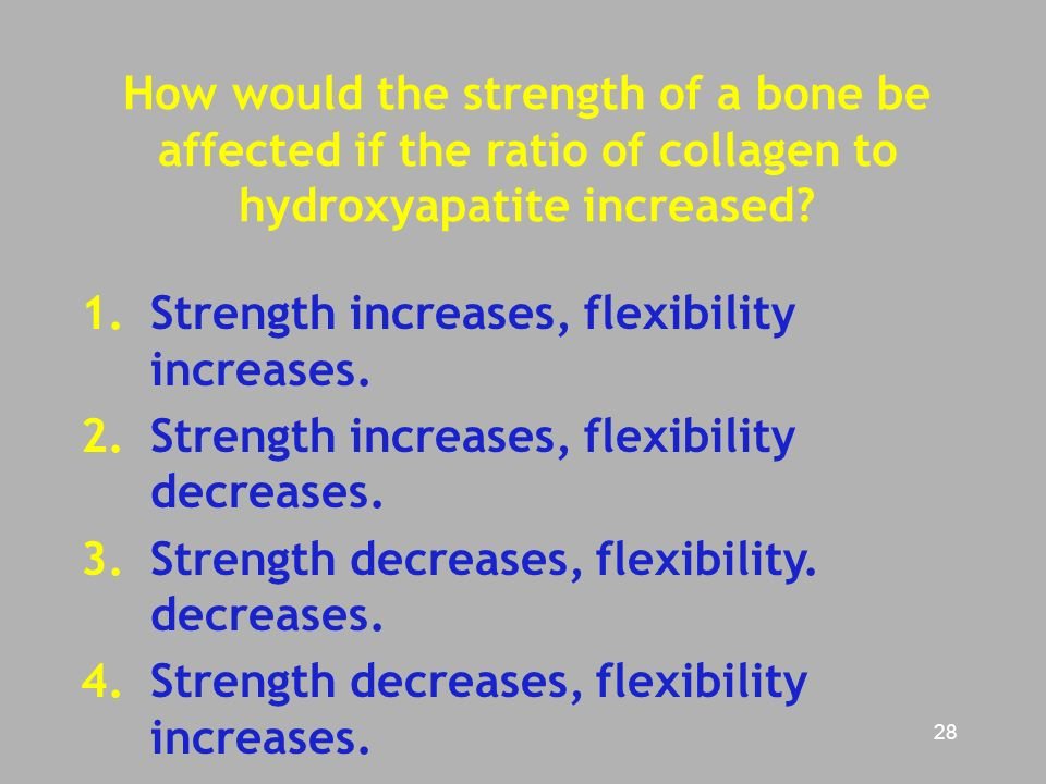 how to build bone strength