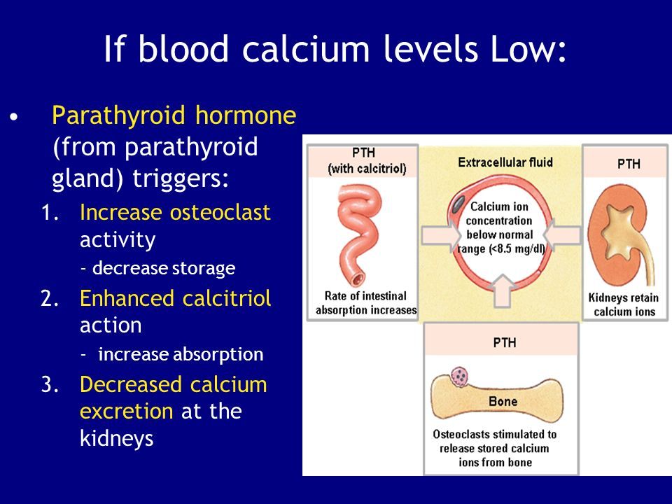 how to fix low calcium levels