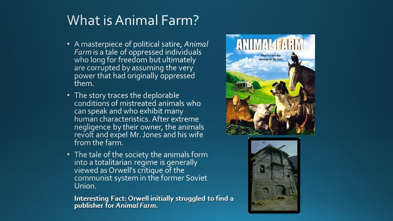 what are animals essays Throughout george orwell's novel, animal farm, the accumulation of power results from language and the use of rhetoric through language and the authority of words.