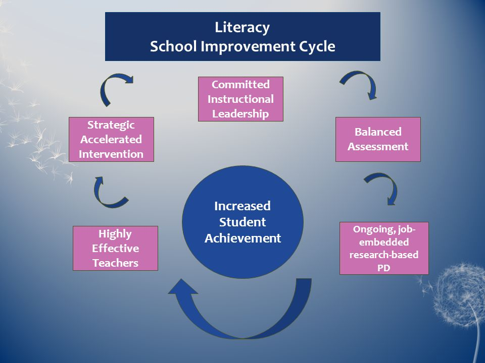 School Improvement Cycle