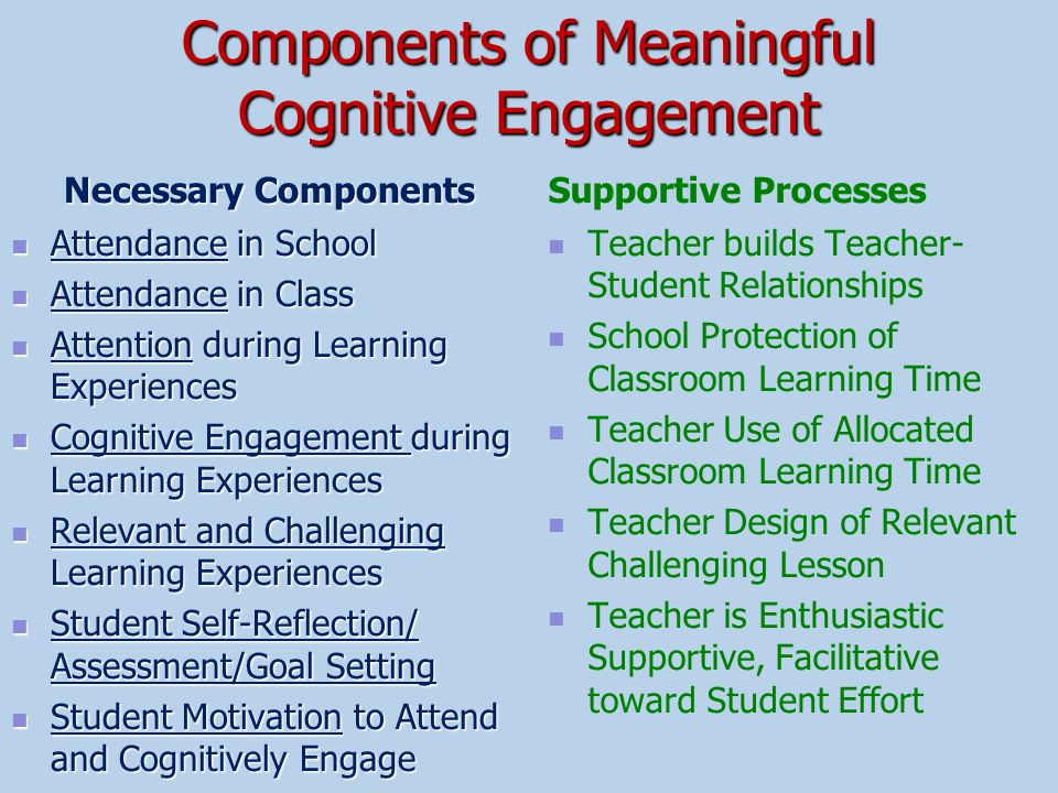 Components of Meaningful Cognitive Engagement