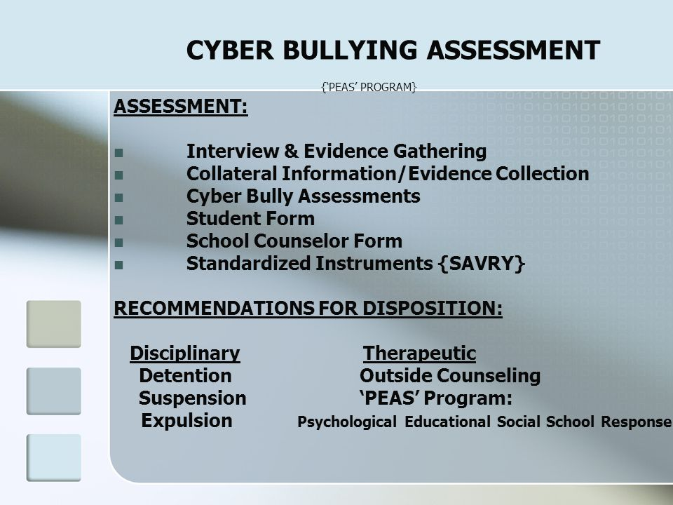 CYBER BULLYING ASSESSMENT {'PEAS' PROGRAM}