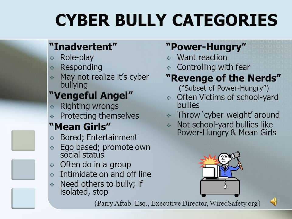 CYBER BULLY CATEGORIES