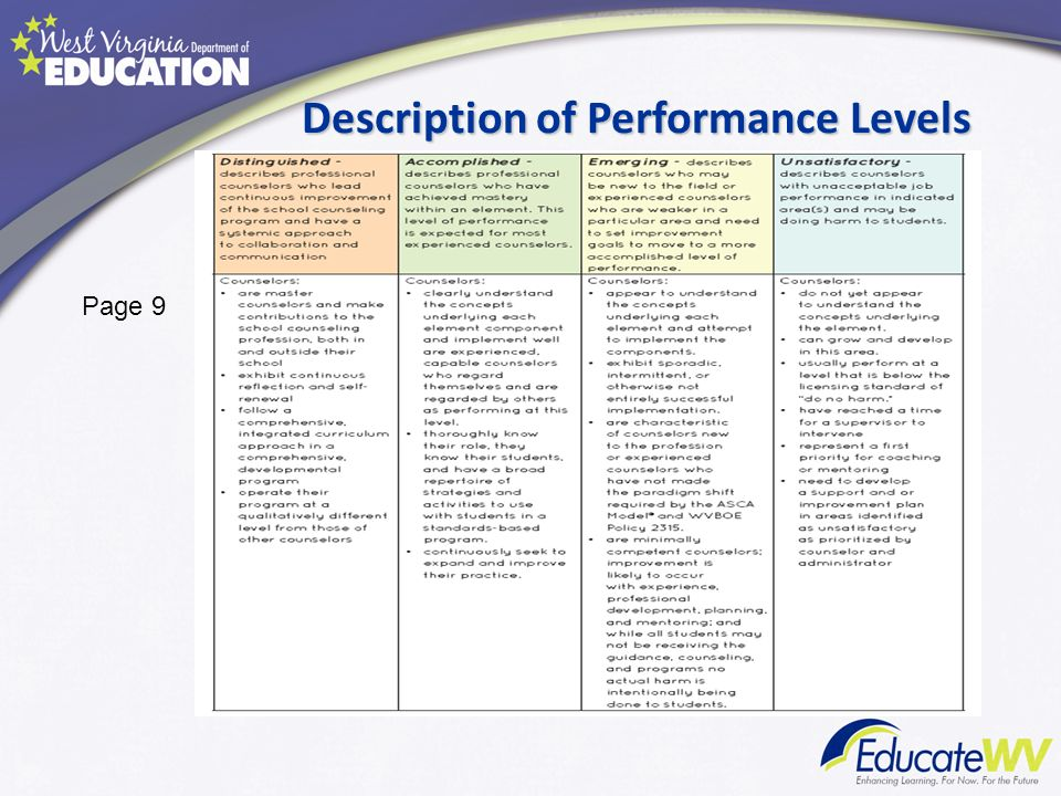 Description of Performance Levels